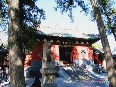 Shaolin Temple's Gate Image