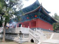 The Great Buddha's Hall