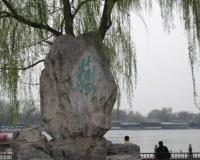 Stone Tablet Under Willow