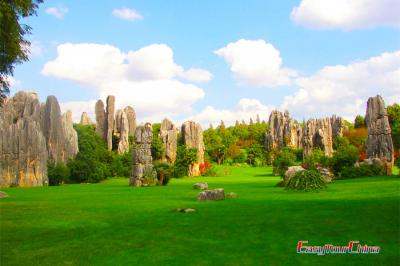 Stone Forest Natural Wonders