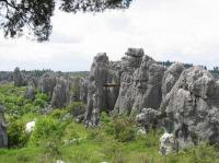 Spectacular Stone Forest