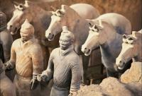terra cotta worriors and horses