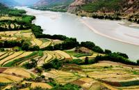The first bend of Yangtze Rice Paddy