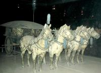 Horse of The Mausoleum of First Emperor Qinshihuang