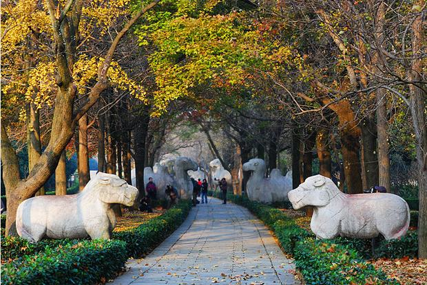 Ming Tomb In Nanjing Stone Animals Nanjing Attractions