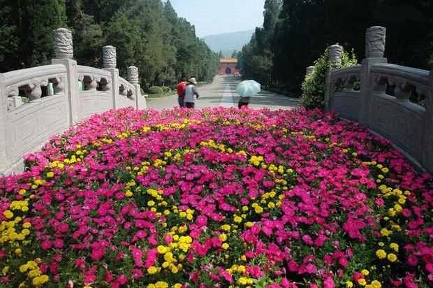The Ming Tomb in Nanjing Flowers