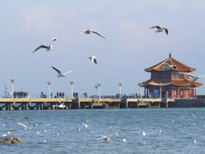 Trio to Qingdao on weekend and visit the Pier of Zhanqiao