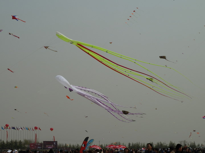 Kites on the Air
