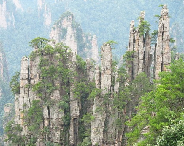 A Scene From Tianzi Mountain