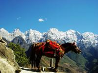 Scenic Tiger Leaping Gorge