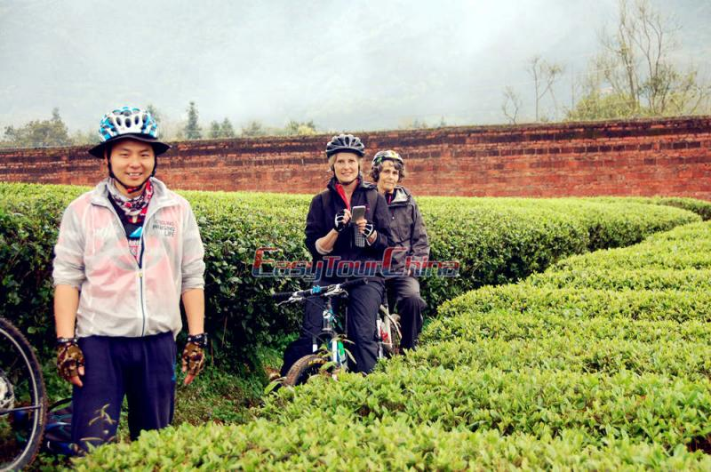 Robert and Dutch Clients Biking to Guilin Tea Plantation in 2016