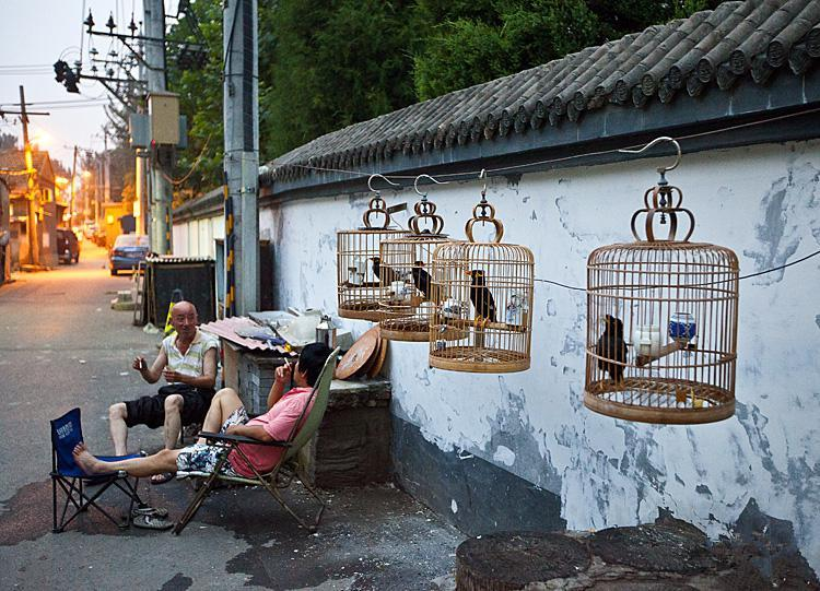 Travel Through Hutong By Rickshaw Where To Find The Real