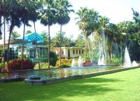 Beautiful Sight of Tropical Botanic Garden