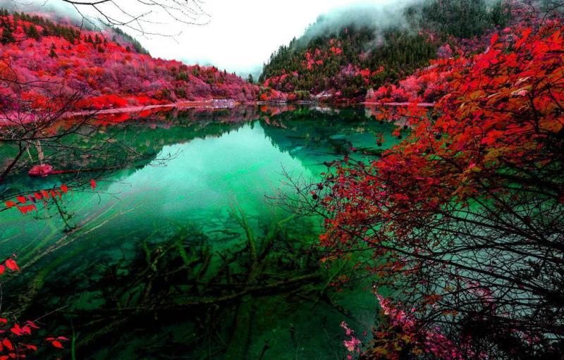Kinh nghiệm du lịch Cửu Trại Câu | mùa xuân