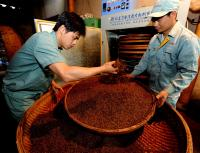 Workers Are Processing Wuyi Rock Tea