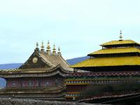 Golden Roofs of Temple
