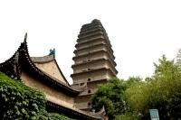 Xian Museum & Small Goose Pagoda Upward