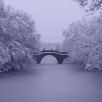 Snow-clad Xixi National Wetland Park