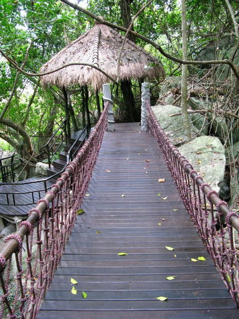 Rainforest Hanging Bridge, Sanya Attractions, Travel