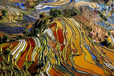 Yunnan Yuanyang Terraced Rice Fields