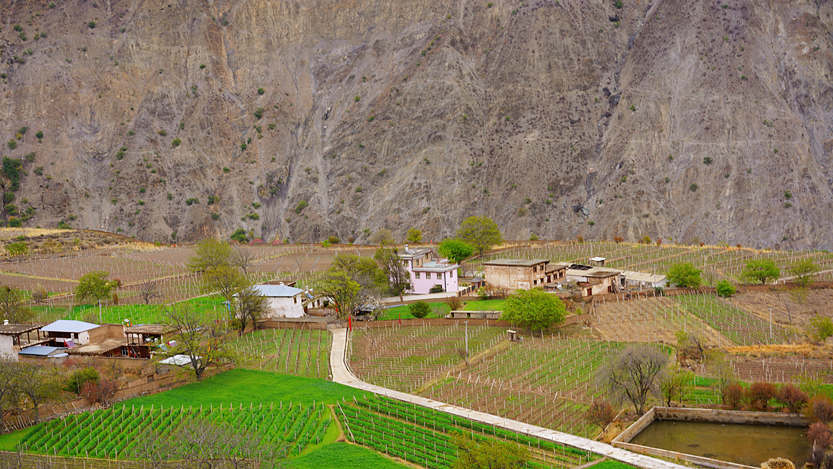 Yubeng Village farmlands