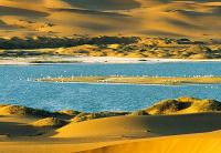 Zhongwei desert and lake landscape