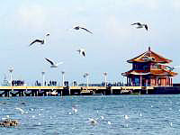 11-day Wonders of Shandong Tour